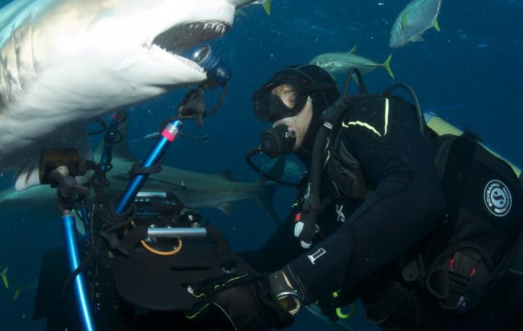 Jindra Soukal - někdy se ocitnete žralokovi opravdu blízko. Natáčení Twinstarfilm v Africe
