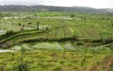 BALI - Jimbaran, Pemuteran a Ubud ( CELOROČNĚ, 11 nocí )