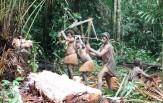 Papua - dobrodružství v Asmatu, CELOROČNĚ ( 6 nocí )