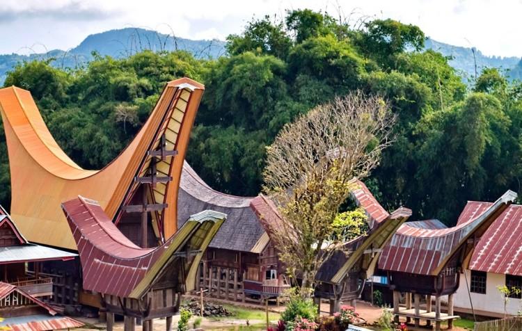 Sulawesi Toraja, CELOROČNĚ ( 4 noci )